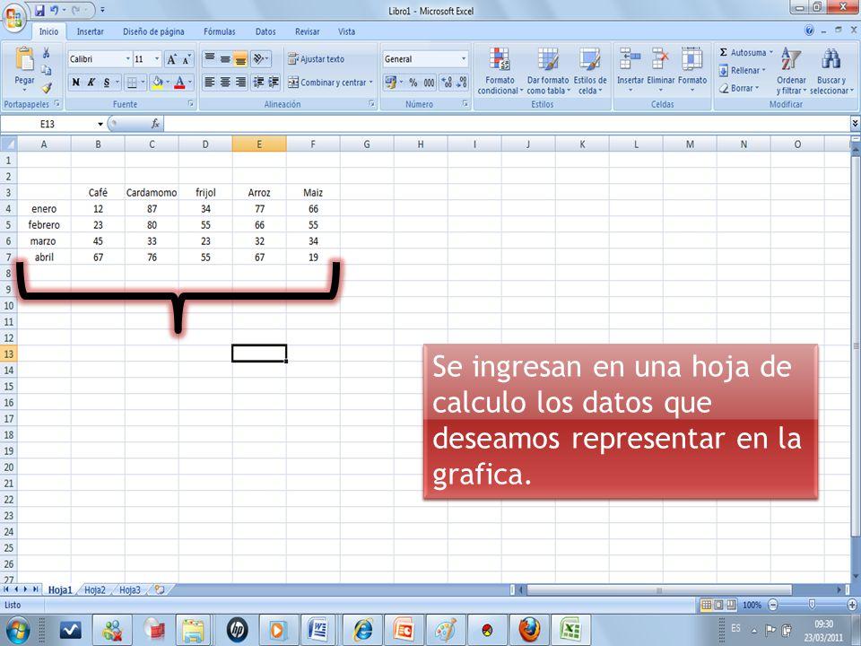 Se ingresan en una hoja de calculo los datos que deseamos representar en la grafica.