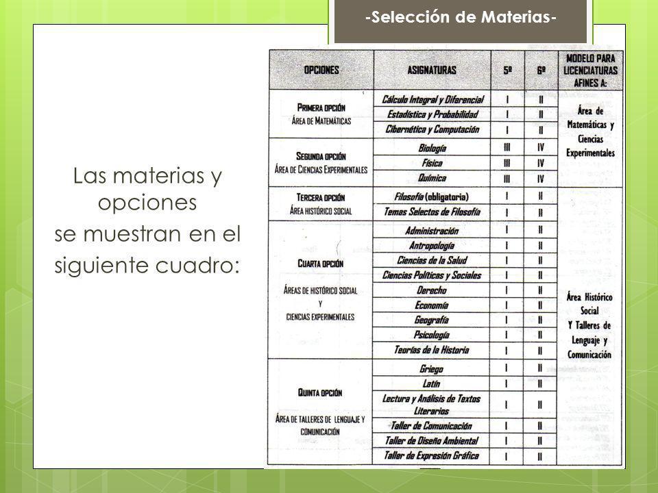 Las materias y opciones se muestran en el siguiente cuadro: -Selección de Materias-