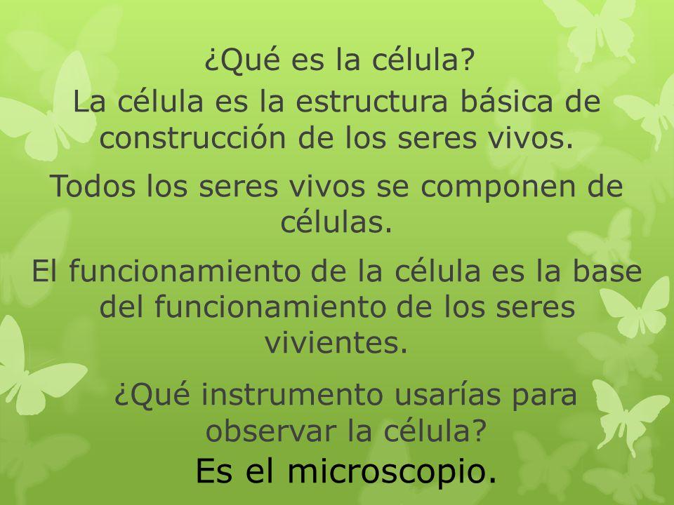 ¿Qué es la célula? La célula es la estructura básica de construcción de los seres vivos. Todos los seres vivos se componen de células. El funcionamien