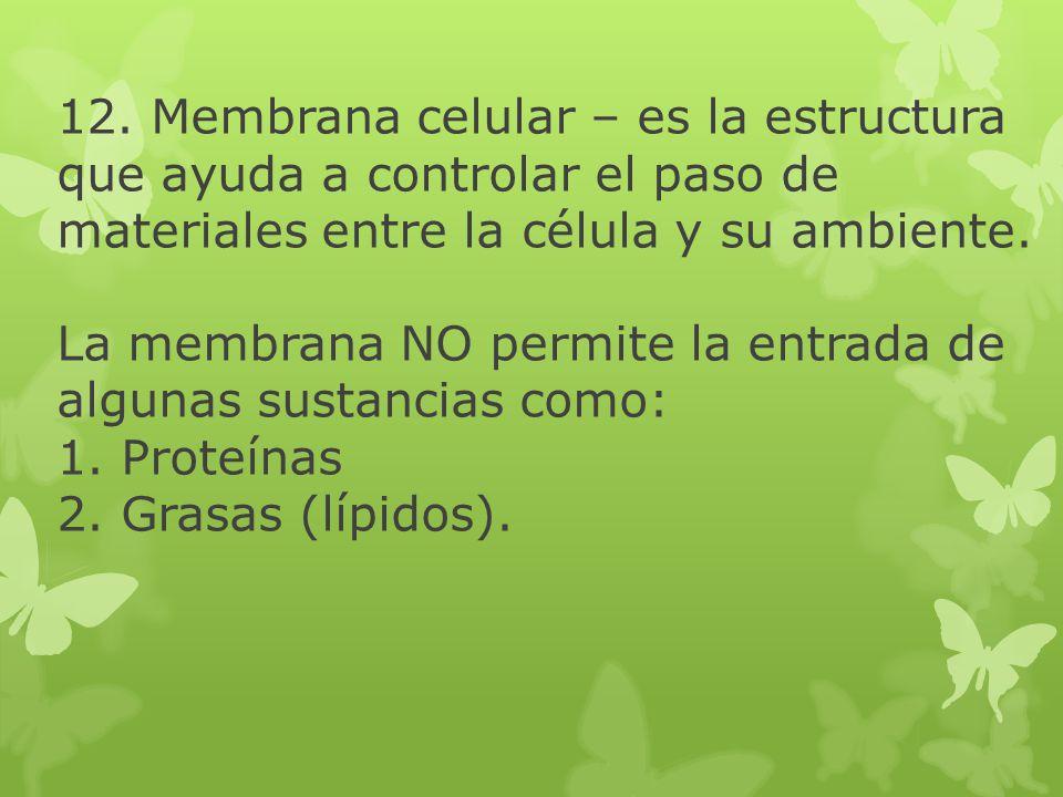 12. Membrana celular – es la estructura que ayuda a controlar el paso de materiales entre la célula y su ambiente. La membrana NO permite la entrada d