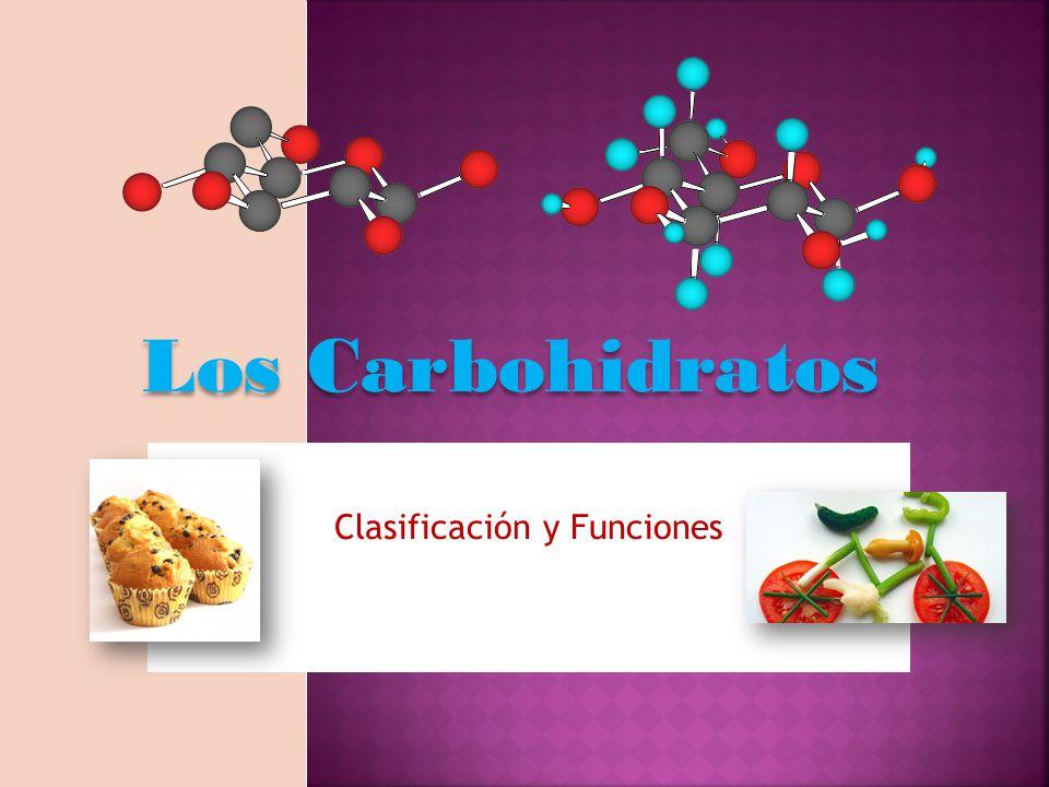 Los Carbohidratos Clasificación y Funciones