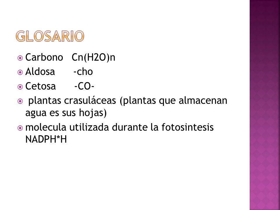 Carbono Cn(H2O)n Aldosa -cho Cetosa -CO- plantas crasuláceas (plantas que almacenan agua es sus hojas) molecula utilizada durante la fotosintesis NADP