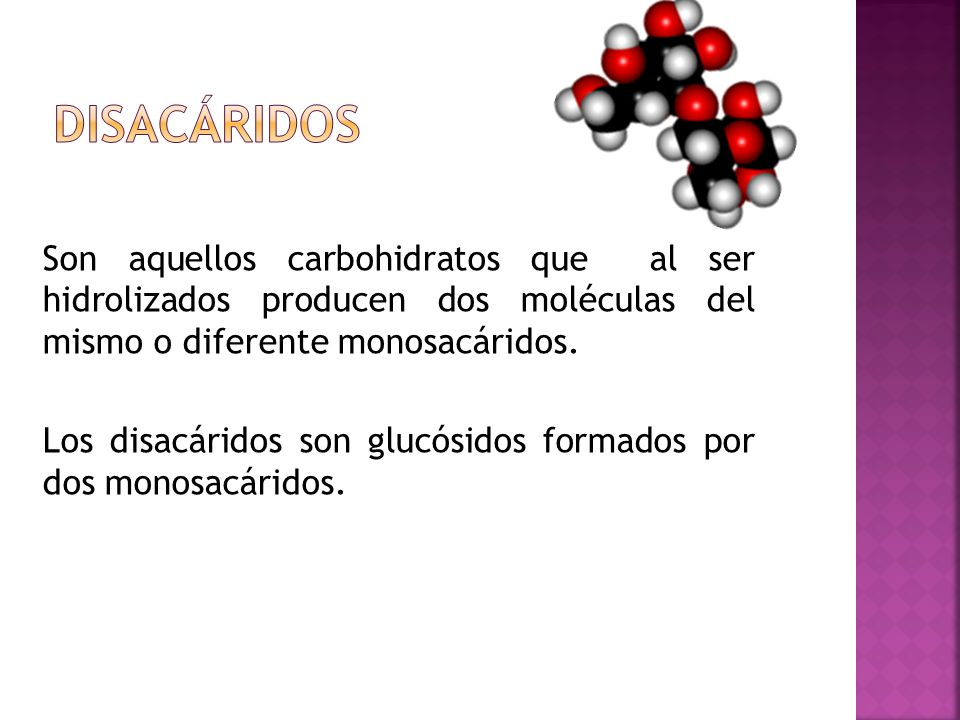 Son aquellos carbohidratos que al ser hidrolizados producen dos moléculas del mismo o diferente monosacáridos. Los disacáridos son glucósidos formados