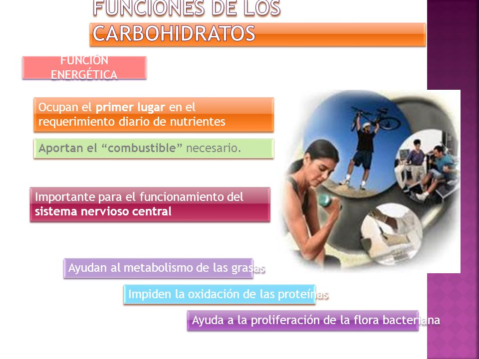 Previene Carbohidratos con fibra vegetal Carbohidratos con fibra vegetal Colesterol Cáncer de colon Tránsito intestinal Glucosa en sangre Regula Deposiciones Regula aumenta Combate