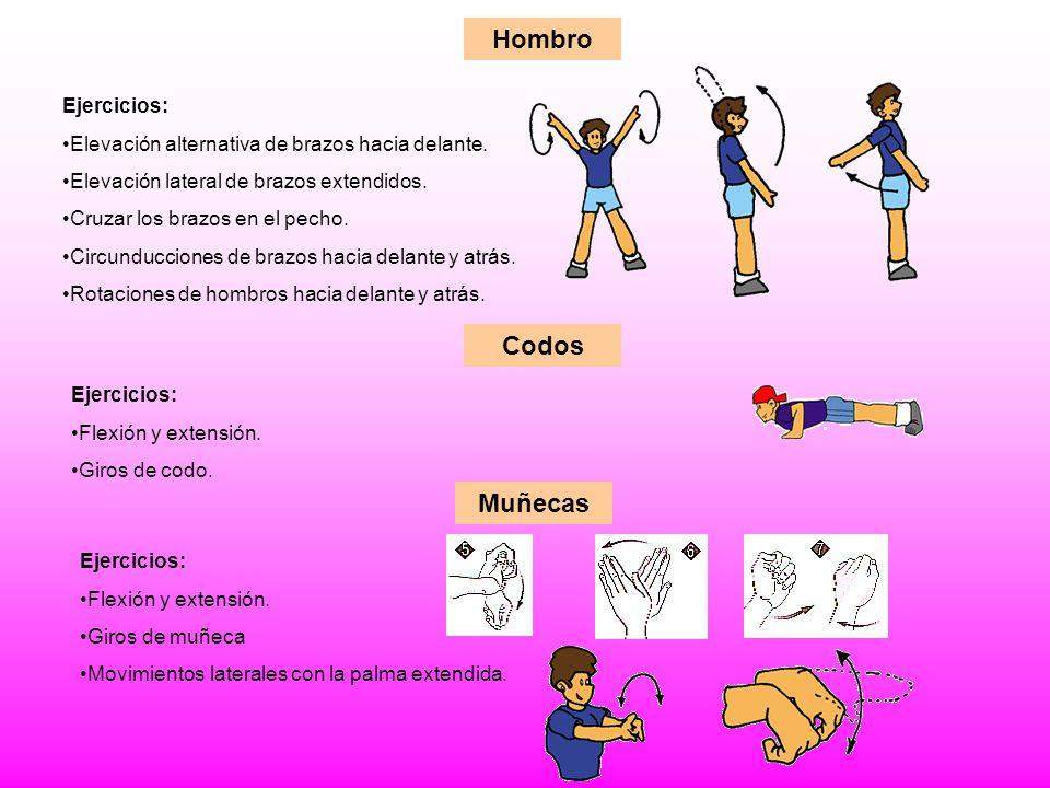 Hombro Ejercicios: Elevación alternativa de brazos hacia delante. Elevación lateral de brazos extendidos. Cruzar los brazos en el pecho. Circunduccion