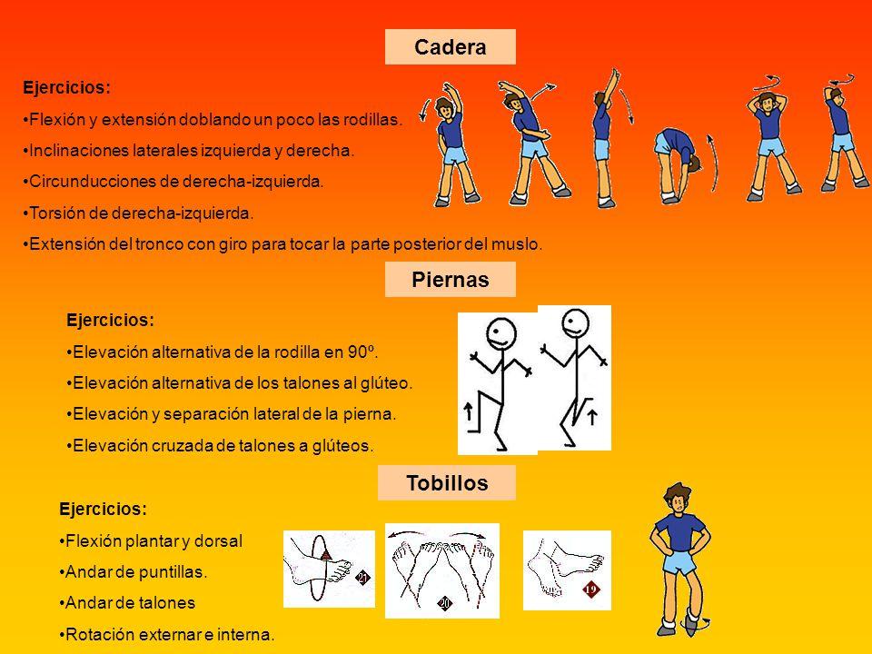 Cadera Ejercicios: Flexión y extensión doblando un poco las rodillas. Inclinaciones laterales izquierda y derecha. Circunducciones de derecha-izquierd