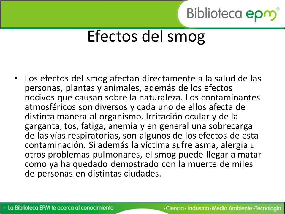 Efectos del smog Los efectos del smog afectan directamente a la salud de las personas, plantas y animales, además de los efectos nocivos que causan so