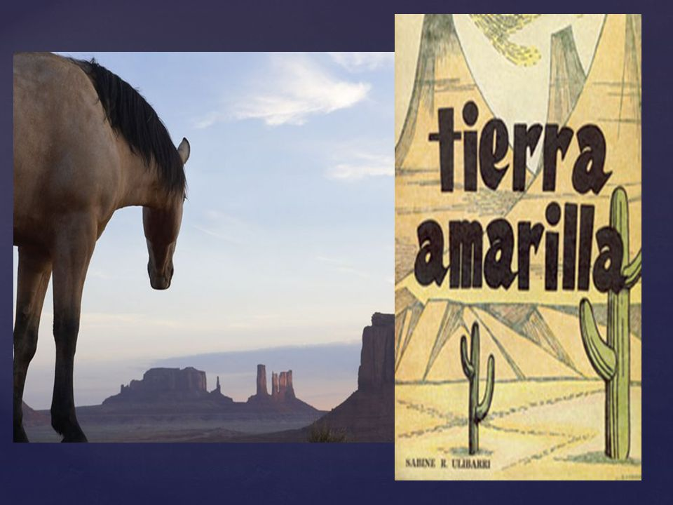 Trabajó como profesor en la universidad de Nuevo México y le mostró a varias generaciones de lectores y estudiantes el amor por su tierra y su cultura.