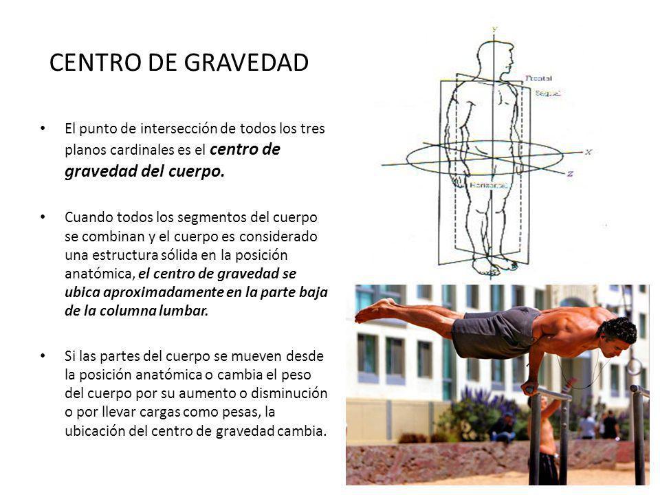 CENTRO DE GRAVEDAD El punto de intersección de todos los tres planos cardinales es el centro de gravedad del cuerpo. Cuando todos los segmentos del cu