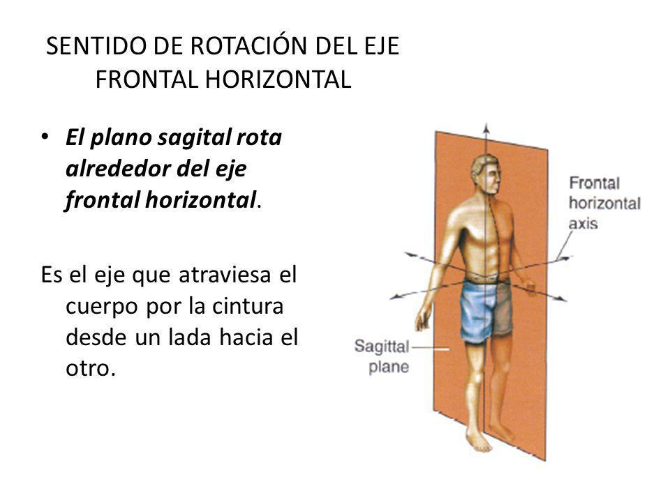 SENTIDO DE ROTACIÓN DEL EJE FRONTAL HORIZONTAL El plano sagital rota alrededor del eje frontal horizontal. Es el eje que atraviesa el cuerpo por la ci