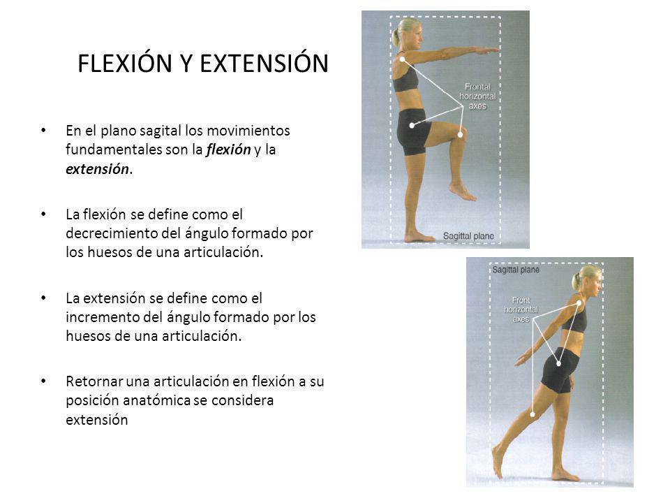 FLEXIÓN Y EXTENSIÓN En el plano sagital los movimientos fundamentales son la flexión y la extensión. La flexión se define como el decrecimiento del án