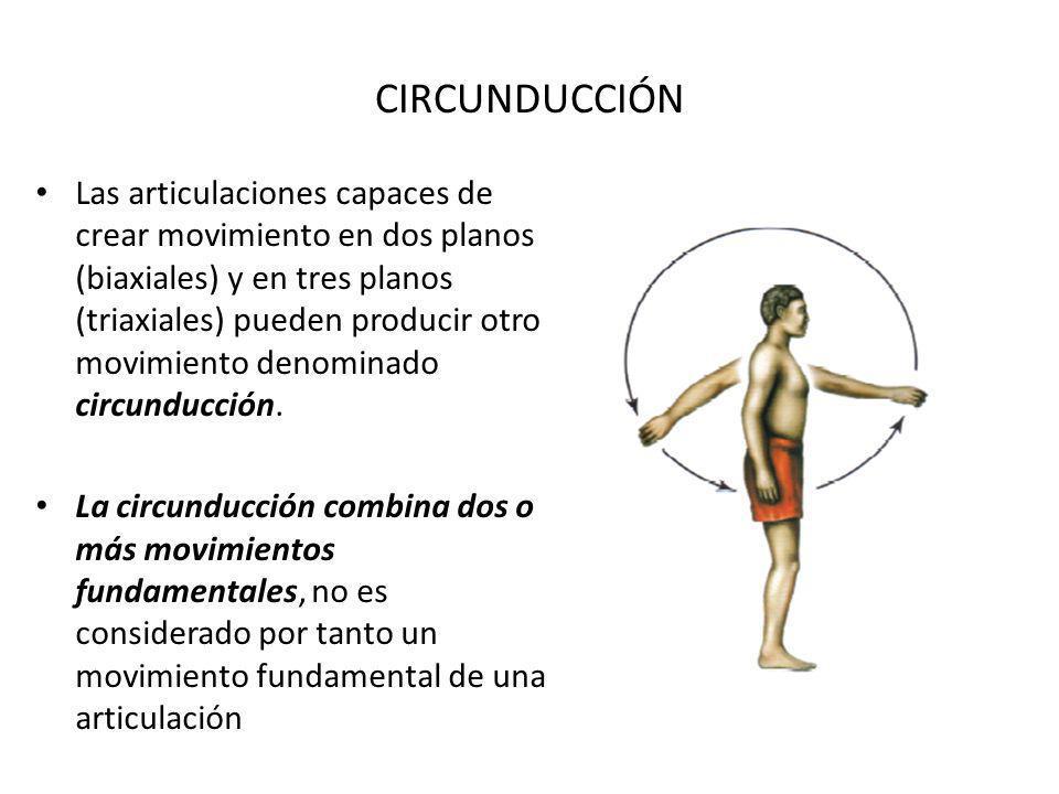 CIRCUNDUCCIÓN Las articulaciones capaces de crear movimiento en dos planos (biaxiales) y en tres planos (triaxiales) pueden producir otro movimiento denominado circunducción.