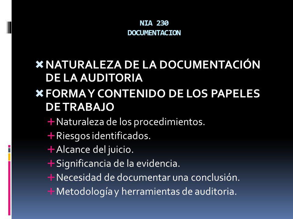 NIA 230 DOCUMENTACION NATURALEZA DE LA DOCUMENTACIÓN DE LA AUDITORIA FORMA Y CONTENIDO DE LOS PAPELES DE TRABAJO Naturaleza de los procedimientos. Rie