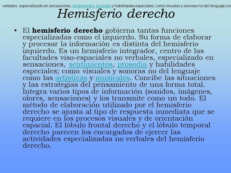 Hemisferio derecho El hemisferio derecho gobierna tantas funciones especializadas como el izquierdo. Su forma de elaborar y procesar la información es