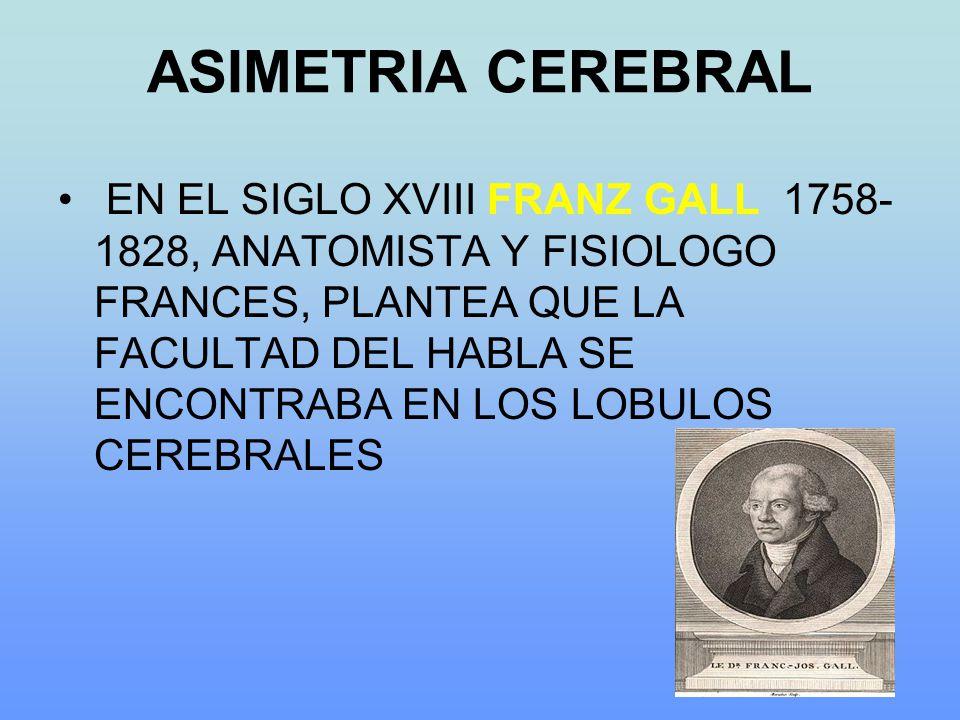 ASIMETRIA CEREBRAL EN EL SIGLO XVIII FRANZ GALL 1758- 1828, ANATOMISTA Y FISIOLOGO FRANCES, PLANTEA QUE LA FACULTAD DEL HABLA SE ENCONTRABA EN LOS LOBULOS CEREBRALES