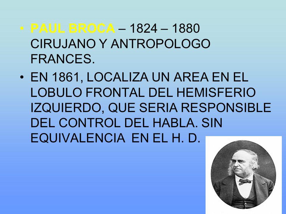 PAUL BROCA – 1824 – 1880 CIRUJANO Y ANTROPOLOGO FRANCES. EN 1861, LOCALIZA UN AREA EN EL LOBULO FRONTAL DEL HEMISFERIO IZQUIERDO, QUE SERIA RESPONSIBL