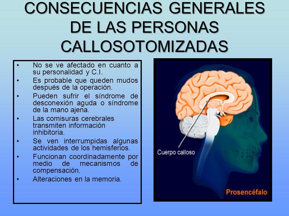 CONSECUENCIAS GENERALES DE LAS PERSONAS CALLOSOTOMIZADAS No se ve afectado en cuanto a su personalidad y C.I. Es probable que queden mudos después de