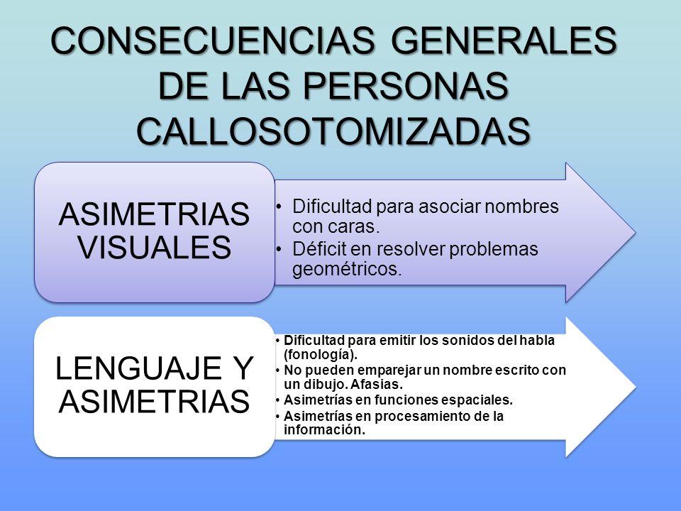 CONSECUENCIAS GENERALES DE LAS PERSONAS CALLOSOTOMIZADAS Dificultad para asociar nombres con caras. Déficit en resolver problemas geométricos. ASIMETR