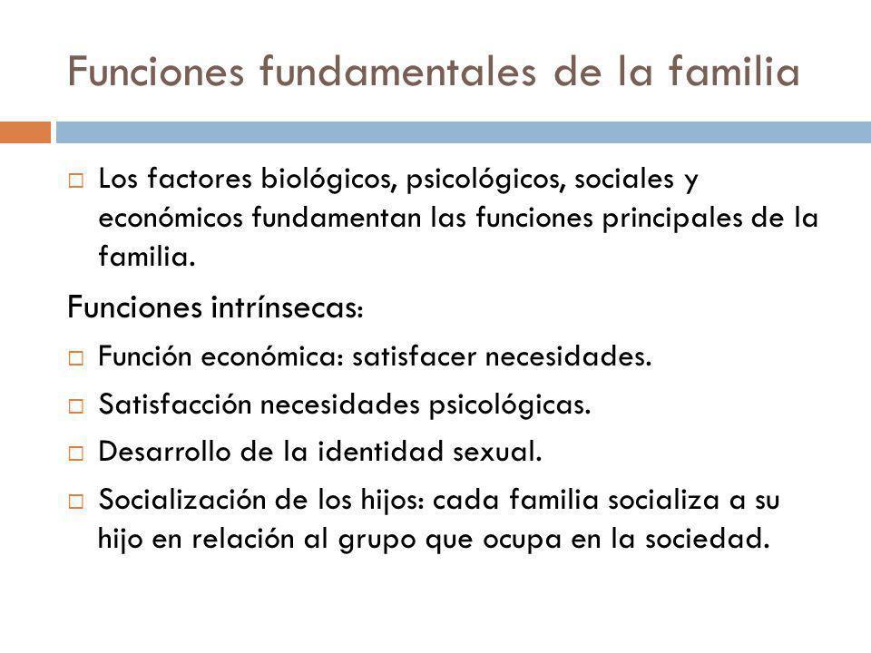 Funciones fundamentales de la familia Los factores biológicos, psicológicos, sociales y económicos fundamentan las funciones principales de la familia