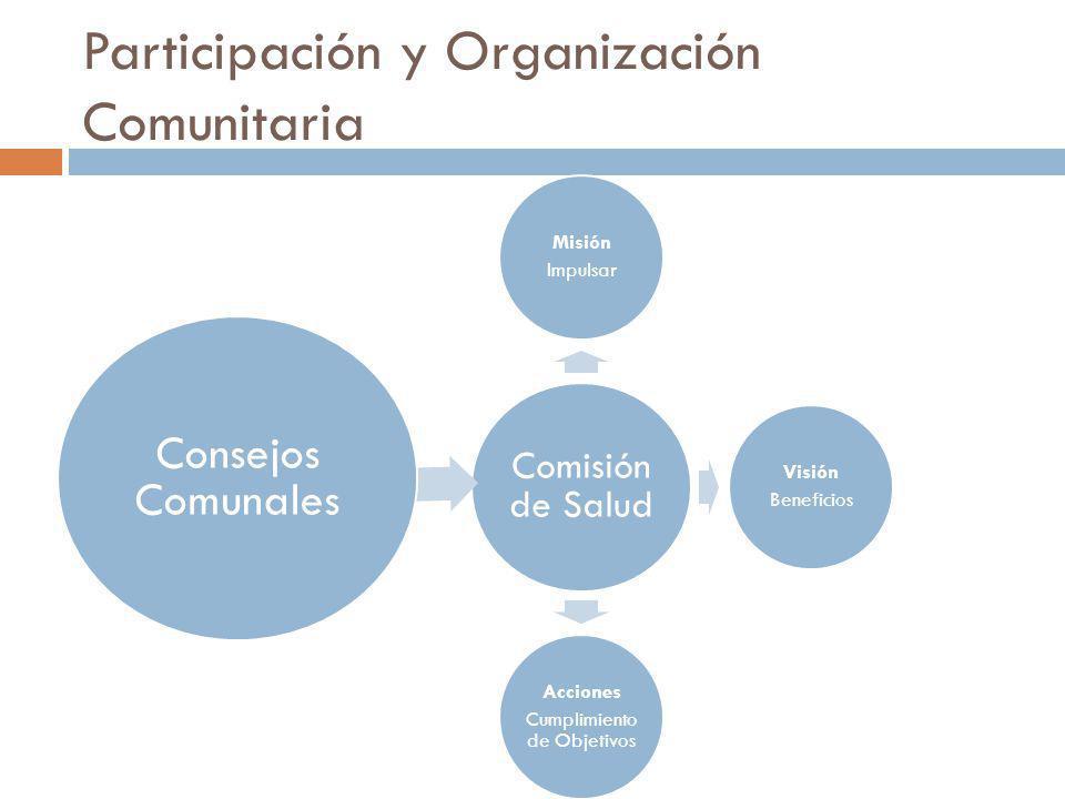 Participación y Organización Comunitaria Comisión de Salud Misión Impulsar Visión Beneficios Acciones Cumplimiento de Objetivos Consejos Comunales
