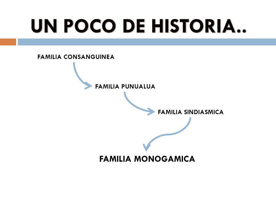 FAMILIA CONSANGUINEA FAMILIA MONOGAMICA FAMILIA SINDIASMICA FAMILIA PUNUALUA