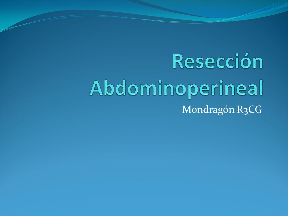 Mondragón R3CG