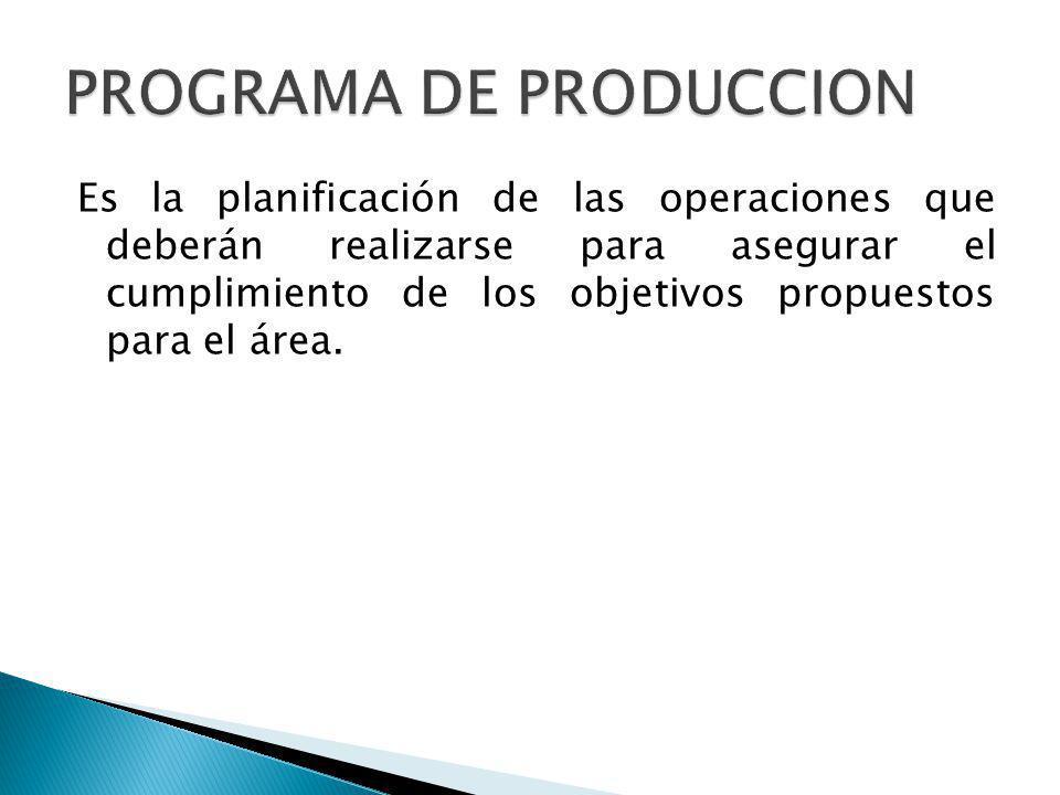 Es la planificación de las operaciones que deberán realizarse para asegurar el cumplimiento de los objetivos propuestos para el área.