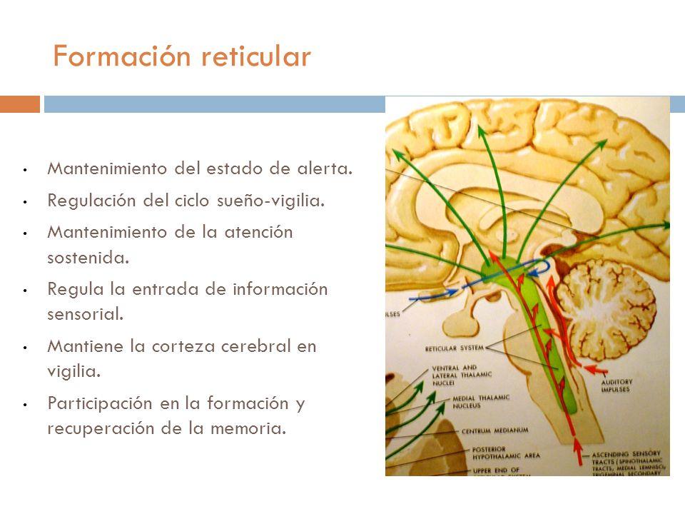 AZULVERDEAMARILLOROJOVERDE R0JOAMARILLOAZULVERDEROJO VERDEAZULAMARILLOAZULROJO AMARILLOROJOAZULVERDE AZULAMARILLOVERDEAZULROJO AZULAMARILLOVERDEAMARILLO VERDEROJOAZULROJO AZUL AMARILLOVERDEROJO AMARILLOROJOVERDEAZULAMARILLO ROJOAMARILLOAZULROJOVERDE