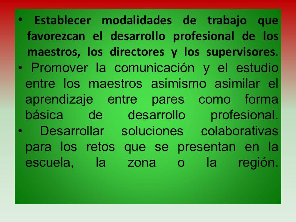 Establecer modalidades de trabajo que favorezcan el desarrollo profesional de los maestros, los directores y los supervisores. Promover la comunicació