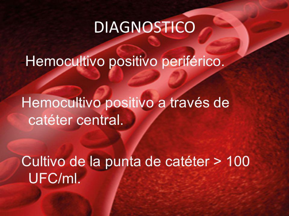 DIAGNOSTICO - Hemocultivo positivo periférico. Hemocultivo positivo a través de catéter central. Cultivo de la punta de catéter > 100 UFC/ml.