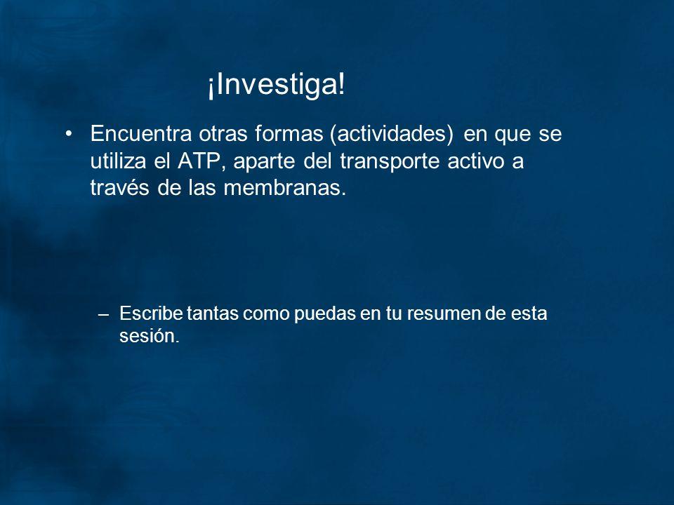 ¡Investiga! Encuentra otras formas (actividades) en que se utiliza el ATP, aparte del transporte activo a través de las membranas. –Escribe tantas com
