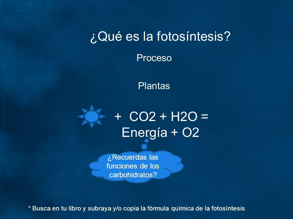 ¿Qué es la fotosíntesis? Proceso Plantas + CO2 + H2O = Energía + O2 ¿Recuerdas las funciones de los carbohidratos? * Busca en tu libro y subraya y/o c