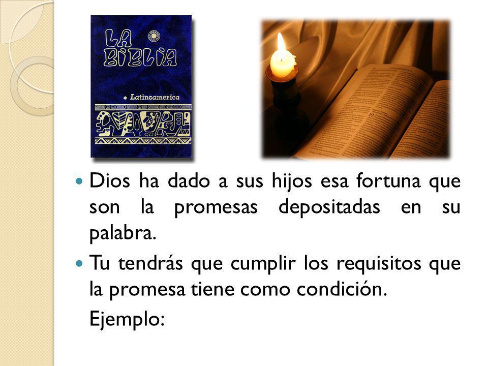 Dios ha dado a sus hijos esa fortuna que son la promesas depositadas en su palabra.