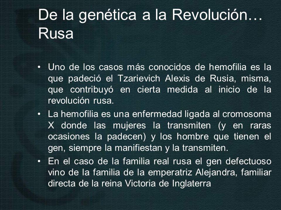 De la genética a la Revolución… Rusa Uno de los casos más conocidos de hemofilia es la que padeció el Tzarievich Alexis de Rusia, misma, que contribuyó en cierta medida al inicio de la revolución rusa.