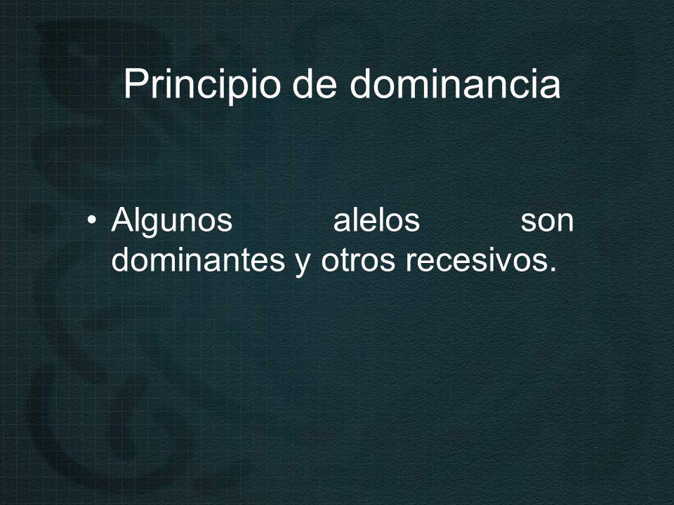 Principio de dominancia Algunos alelos son dominantes y otros recesivos.