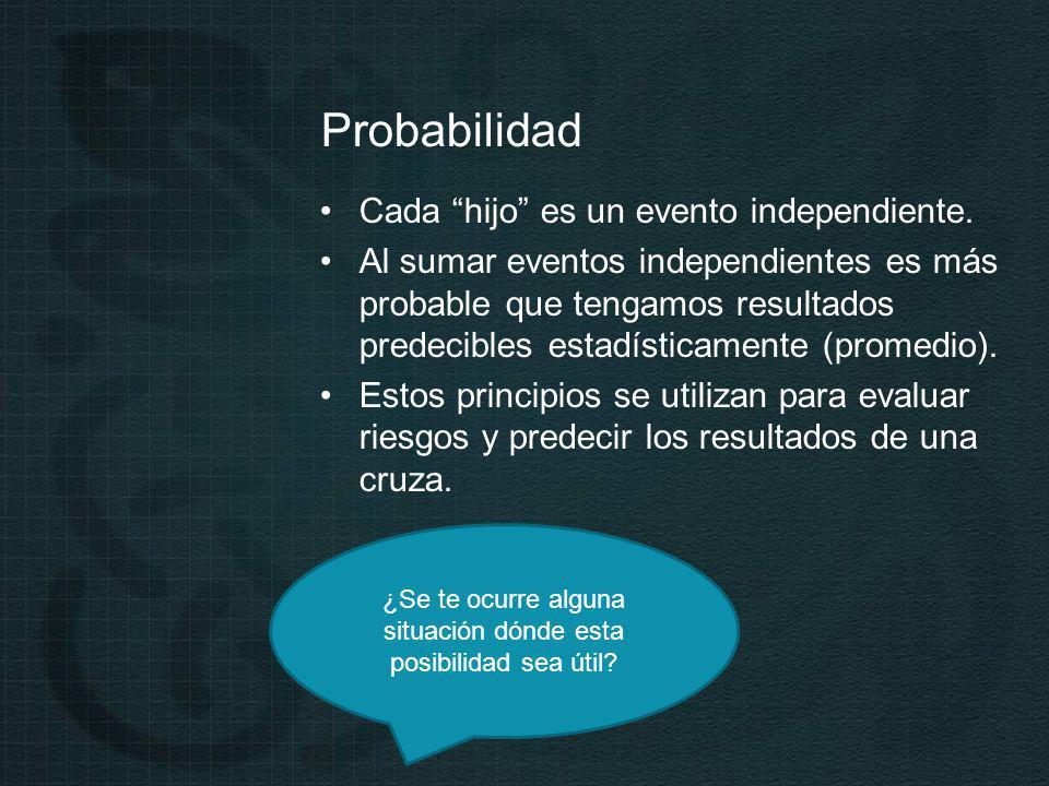 Probabilidad Cada hijo es un evento independiente.