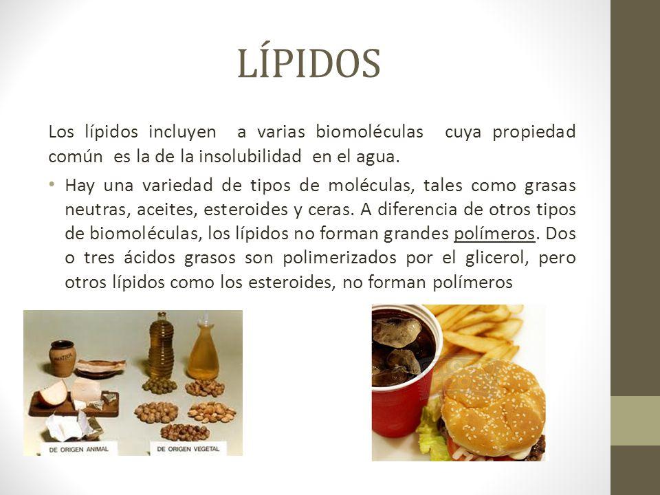 LÍPIDOS Los lípidos incluyen a varias biomoléculas cuya propiedad común es la de la insolubilidad en el agua. Hay una variedad de tipos de moléculas,