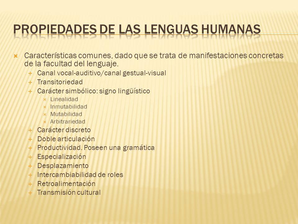 Características comunes, dado que se trata de manifestaciones concretas de la facultad del lenguaje.