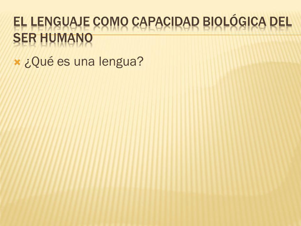 ¿Qué es una lengua?