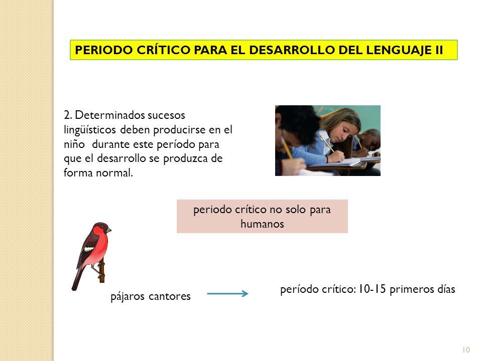 10 PERIODO CRÍTICO PARA EL DESARROLLO DEL LENGUAJE II 2. Determinados sucesos lingüísticos deben producirse en el niño durante este período para que e