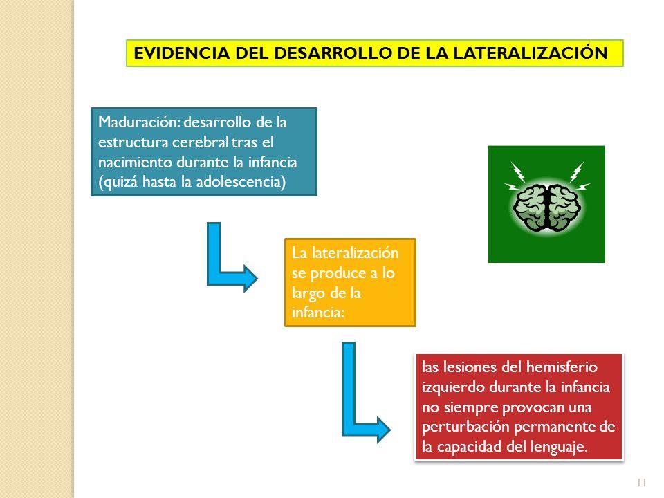 11 EVIDENCIA DEL DESARROLLO DE LA LATERALIZACIÓN Maduración: desarrollo de la estructura cerebral tras el nacimiento durante la infancia (quizá hasta