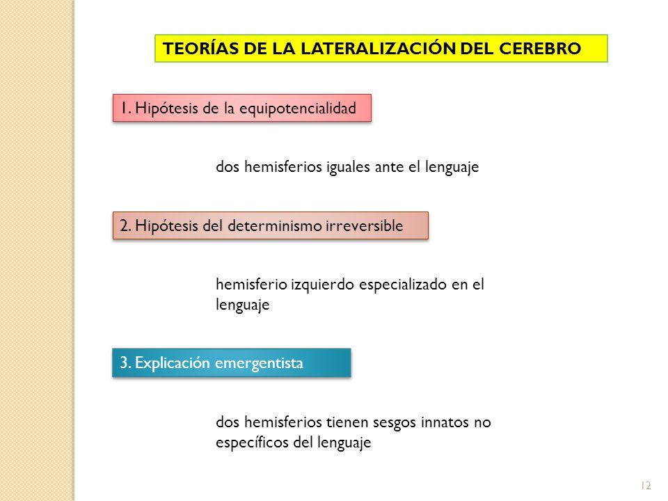 12 TEORÍAS DE LA LATERALIZACIÓN DEL CEREBRO 1. Hipótesis de la equipotencialidad 2. Hipótesis del determinismo irreversible 3. Explicación emergentist