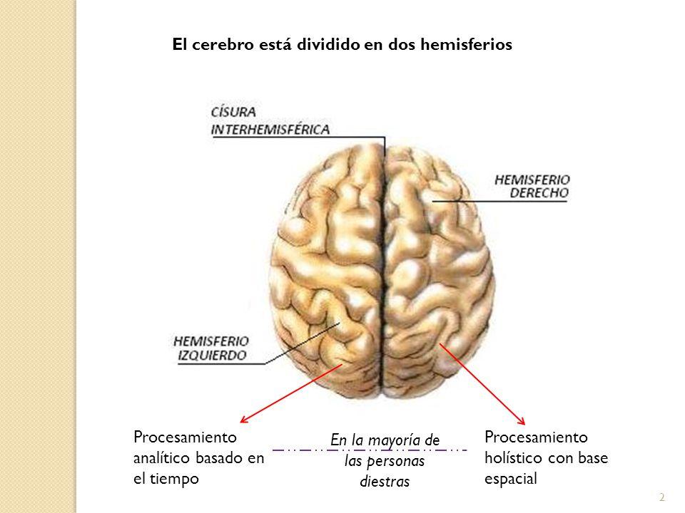 2 El cerebro está dividido en dos hemisferios Procesamiento analítico basado en el tiempo Procesamiento holístico con base espacial En la mayoría de l