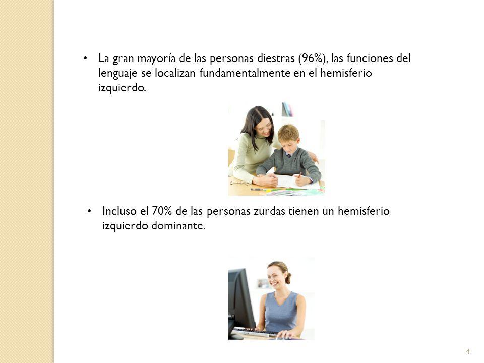 4 La gran mayoría de las personas diestras (96%), las funciones del lenguaje se localizan fundamentalmente en el hemisferio izquierdo. Incluso el 70%