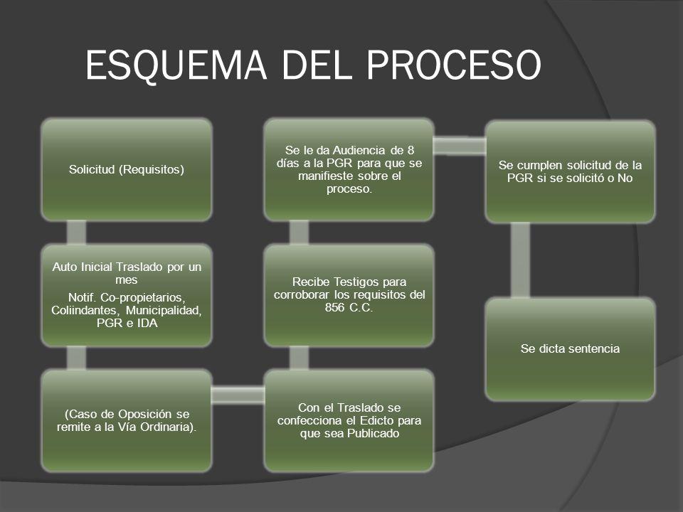 ESQUEMA DEL PROCESO Solicitud (Requisitos) Auto Inicial Traslado por un mes Notif.