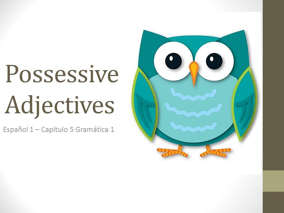 Possessive Adjectives Español 1 – Capítulo 5 Gramática 1