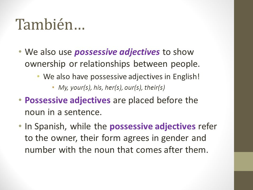 También… We also use possessive adjectives to show ownership or relationships between people. We also have possessive adjectives in English! My, your(