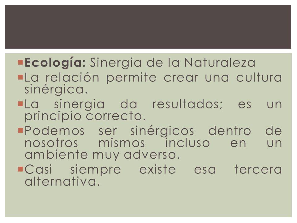 Ecología: Sinergia de la Naturaleza La relación permite crear una cultura sinérgica. La sinergia da resultados; es un principio correcto. Podemos ser