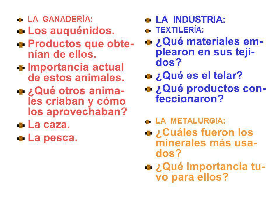 LA GANADERÍA: Los auquénidos. Productos que obte- nían de ellos. Importancia actual de estos animales. ¿Qué otros anima- les criaban y cómo los aprove