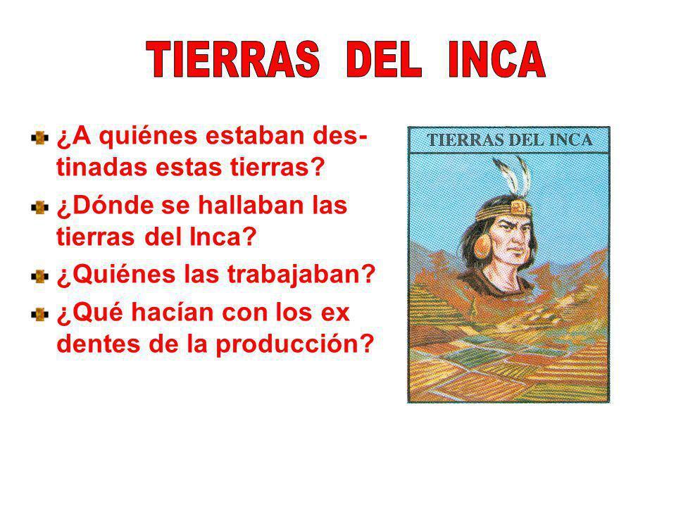 ¿A quiénes estaban des- tinadas estas tierras? ¿Dónde se hallaban las tierras del Inca? ¿Quiénes las trabajaban? ¿Qué hacían con los ex dentes de la p